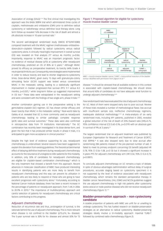 European Oncology & Haematology